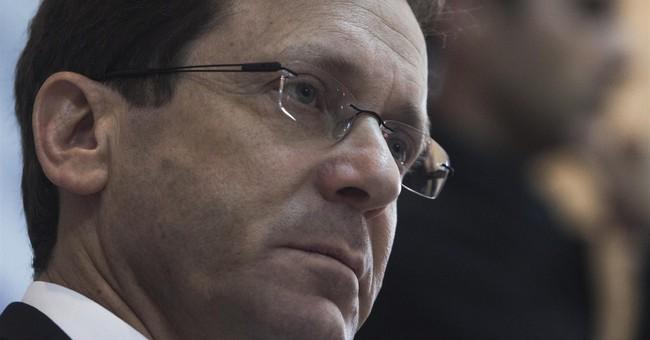 Israeli challenger Herzog a determined underdog
