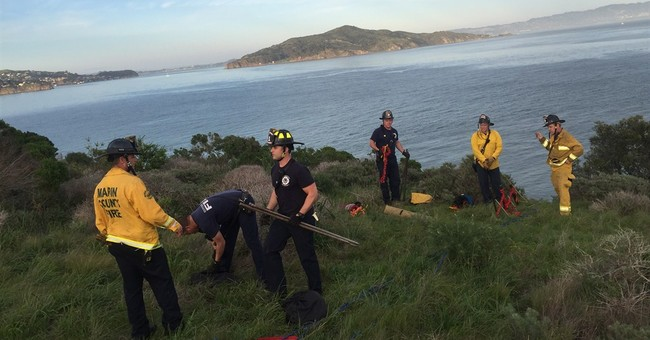2 vandalism suspects rescued after being stranded on cliff