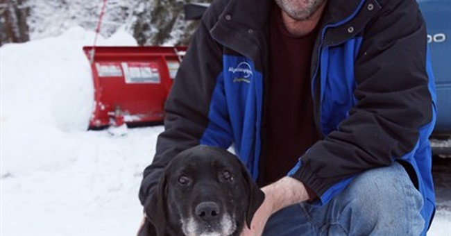 Blind dog rescued after being lost for 2 weeks in the cold