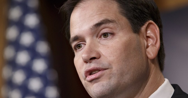 Florida's Marco Rubio says he can win presidential election