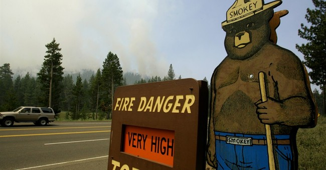 Forest Service pulls protested plan to spend $10M on image