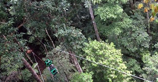 Next Google Maps adventure: Soaring through Amazon jungle