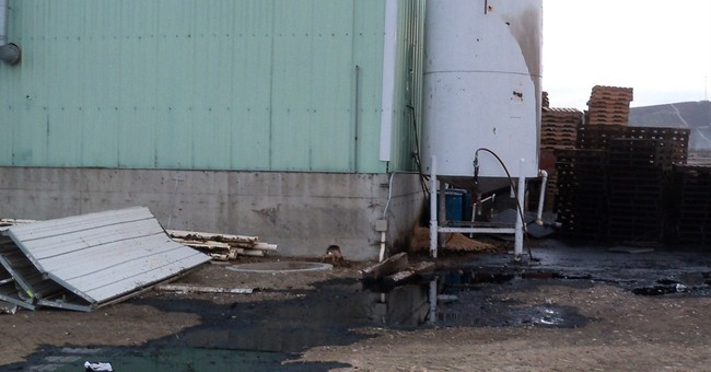 Washington state spill covers 50 birds in used motor oil