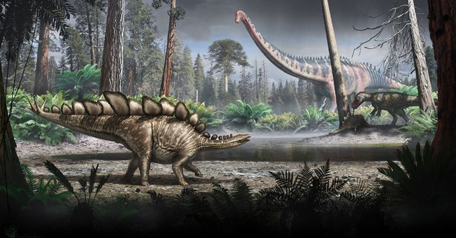 UK scientists work out weight of Sophie the Stegosaurus