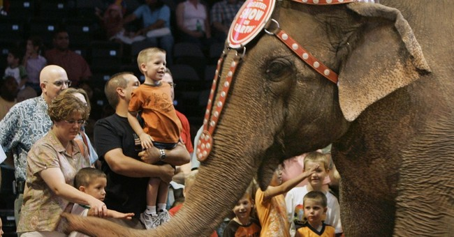 AP PHOTOS: Ringling Bros to retire elephants; tradition ends
