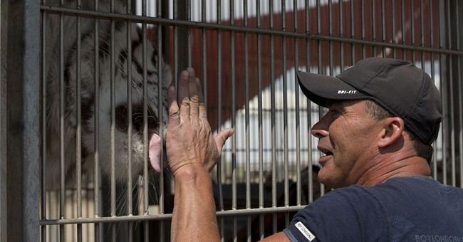 Mexican circus owners say ban means animals may die