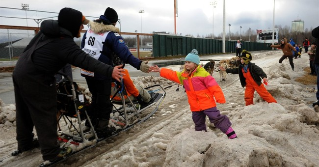 Finally some snow for Iditarod mushers