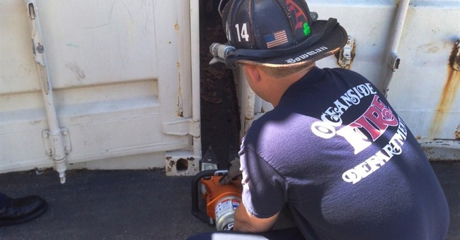 Firefighters use Jaws of Life to rescue trapped dog