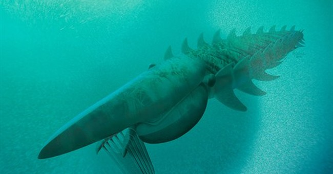 Fossils of sea creature give clues to early limb evolution
