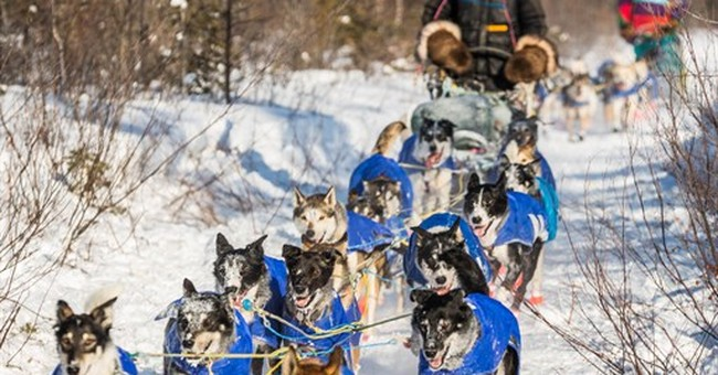 Musher disqualified from Alaska Iditarod race for iPod
