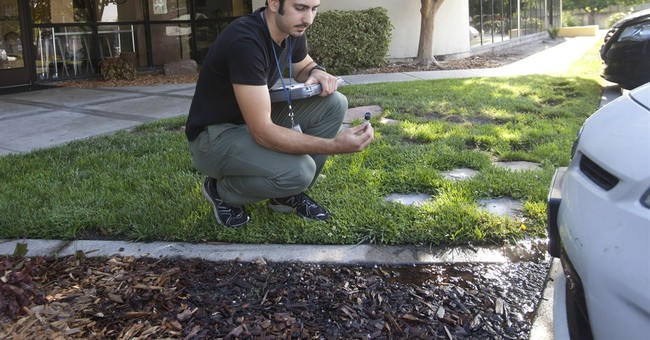 Drought-stricken California ramps up water restrictions