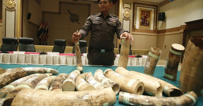 Thailand arrests Malaysian, Thai men after seizing ivory