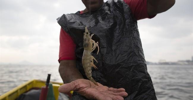 AP PHOTOS: Fishermen lament Rio's dirty Olympic bay