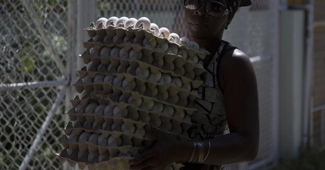Prison sentences for egg theft scheme in Cuba