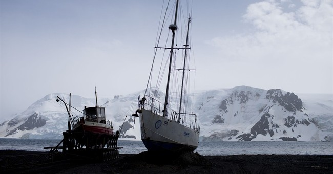 Antarctica tourists: Be prepared for the wild and unexpected