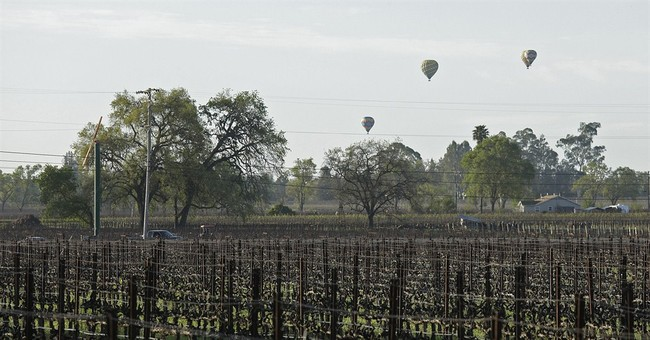 Napa winemaker was unraveling before he shot investor, self