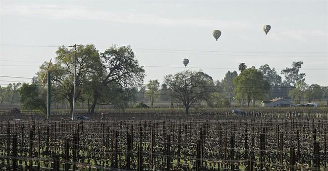 Napa winemaker was unraveling before he shot investor, self
