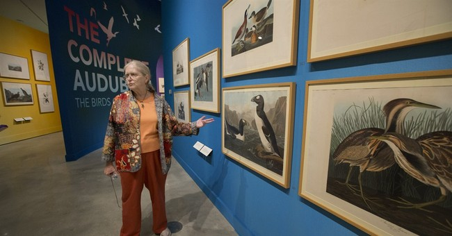 'The Birds of America' take flight in HistoryMiami exhibit