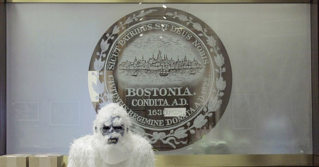 Boston Yeti selling swag to benefit MSPCA's animals in need