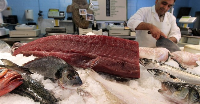 AP NewsBreak: EU continues to overfish despite commitments