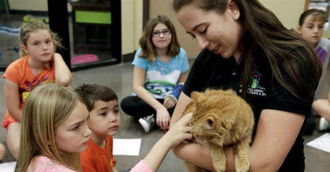 Animal shelters let kids cozy up to pets at summer camps