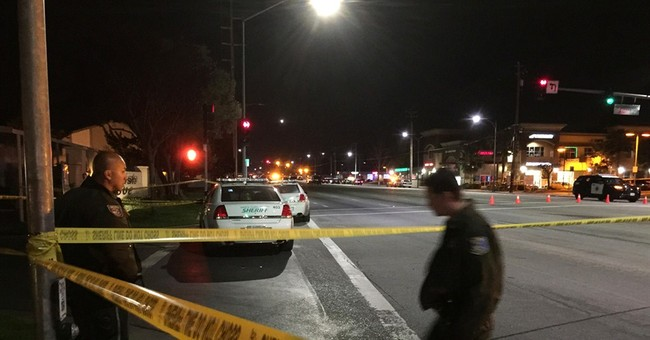 Man shoots, kills California officer who was checking on him