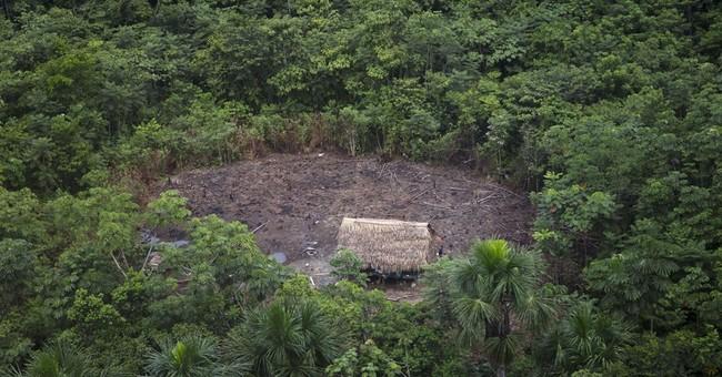AP PHOTOS: Illegal logging, fear haunt remote Peru village