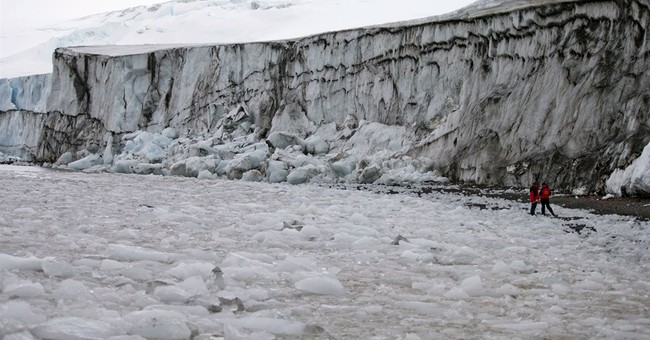 Critters found in Antarctic ice show how tenacious life is