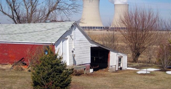 Nation's biggest nuclear firm makes a play for green money