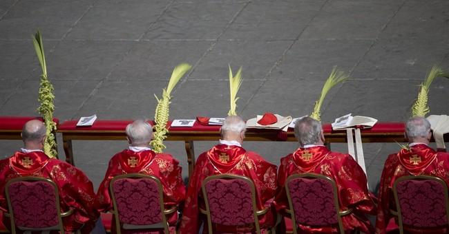 Pope prays for plane crash dead during Palm Sunday Mass