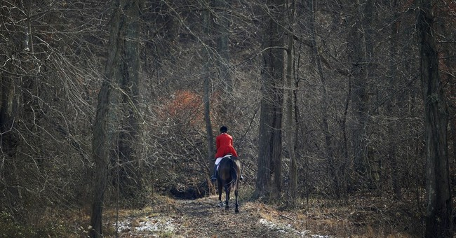 AP PHOTOS: Horsemen chase thrill of the hunt, scent of a fox