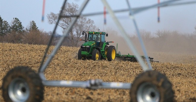 USDA: Record soybean acres expected, corn acres to drop
