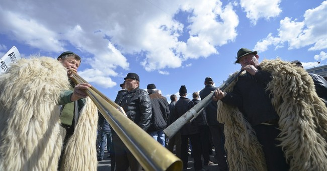Romanian cow, sheep farmers protest low, late govt subsidies