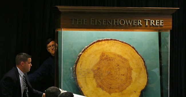 Piece of Eisenhower Tree heading to presidential library