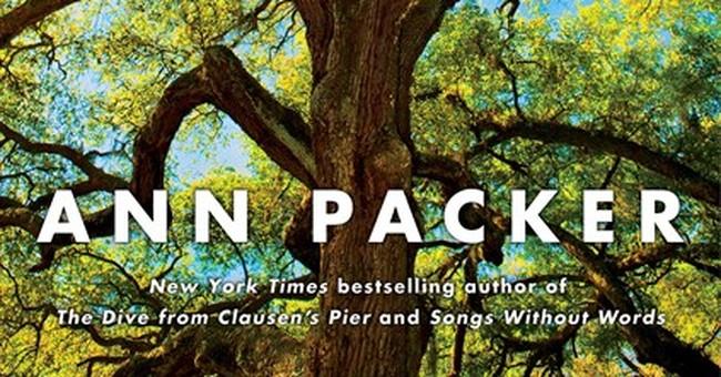 Gorgeous writing gives power to flat, rushed novel