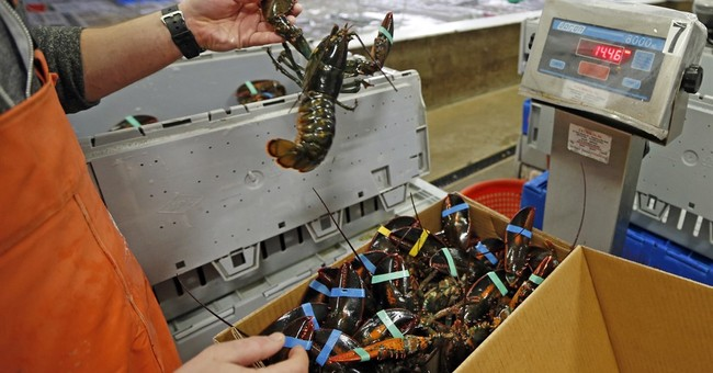 Pretty Selfish: Sweden Tries to Ban Imports of American Lobster