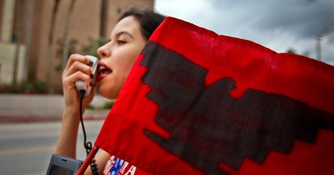 Border Security: Texas Leads While Feds Fail