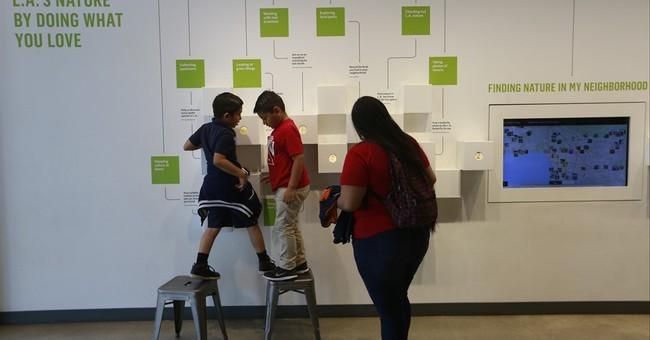 Museum enlists volunteers in search for creepy crawlies