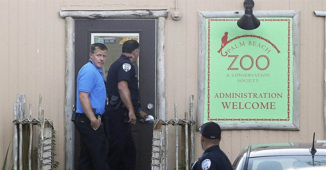 Florida zoo to reopen after deadly tiger attack