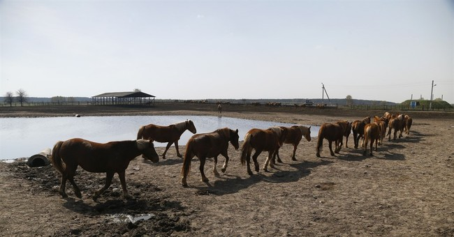 AP Exclusive: Test finds Chernobyl residue in Belarus milk