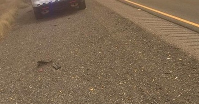Blowing dust closes I-10 stretch between Arizona, New Mexico