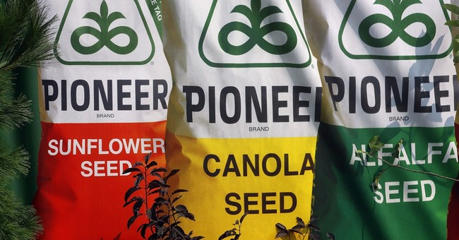 DuPont reports sales down 6 percent on strong dollar