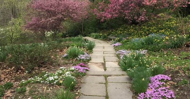 Serenity Now: Gardens, 100-acre park at Indianapolis Museum
