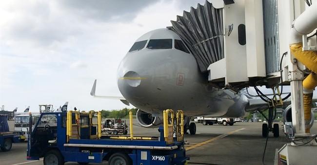 Bird strike leaves large dent on jetliner's nose