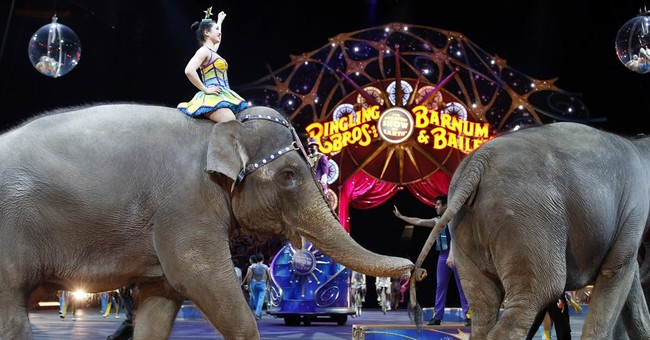 The Latest: Elephants give final Ringling Bros. performance