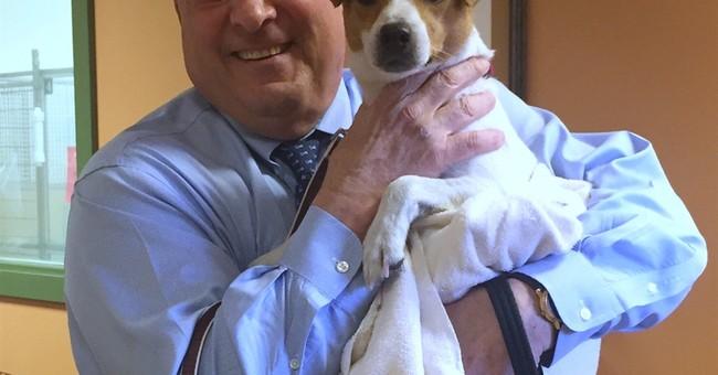Maine's GOP governor, veto record-holder, names new dog Veto