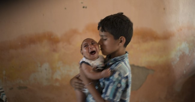 CDC: Strong signs Brazil birth defects are tied to mosquito