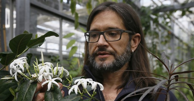 Royal Botanical Gardens: Mixed report on the world's plants