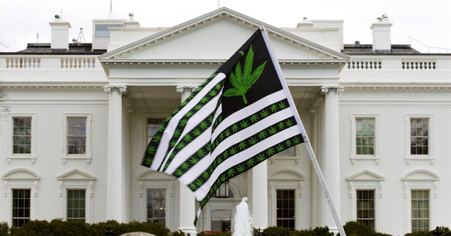 Scientific basis for laws on marijuana, driving questioned