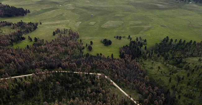 Sioux tribes push to protect sacred Black Hills site Pe' Sla